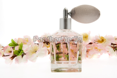 perfume, pink, bottle, with, cherry, blossoms - 1781743
