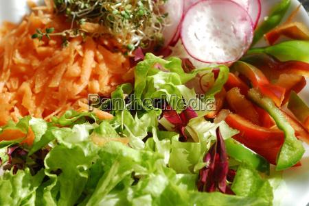 salad plate 01