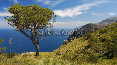 mallorca espanya de agua mediterraneo de