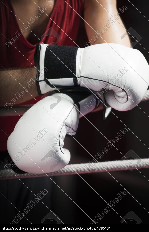 boxing - 1786131