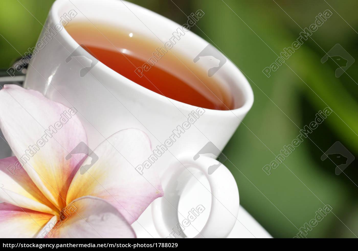 tea - 1788029
