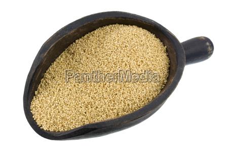 scoop, of, amaranth, grain - 1789529