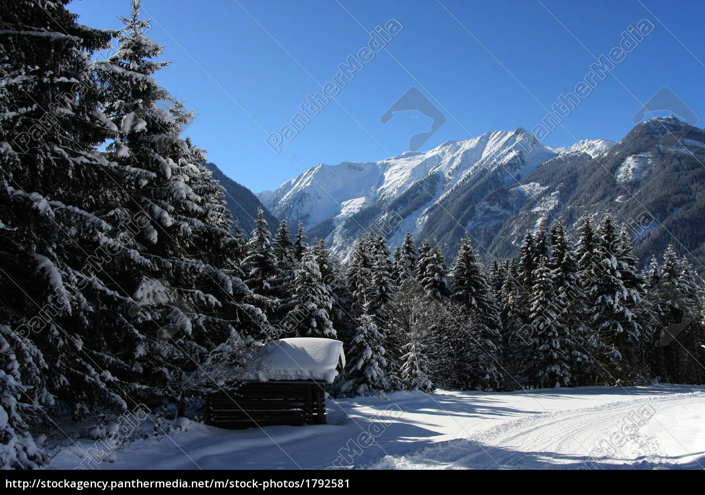 winter, magic, in, neukirchen - 1792581