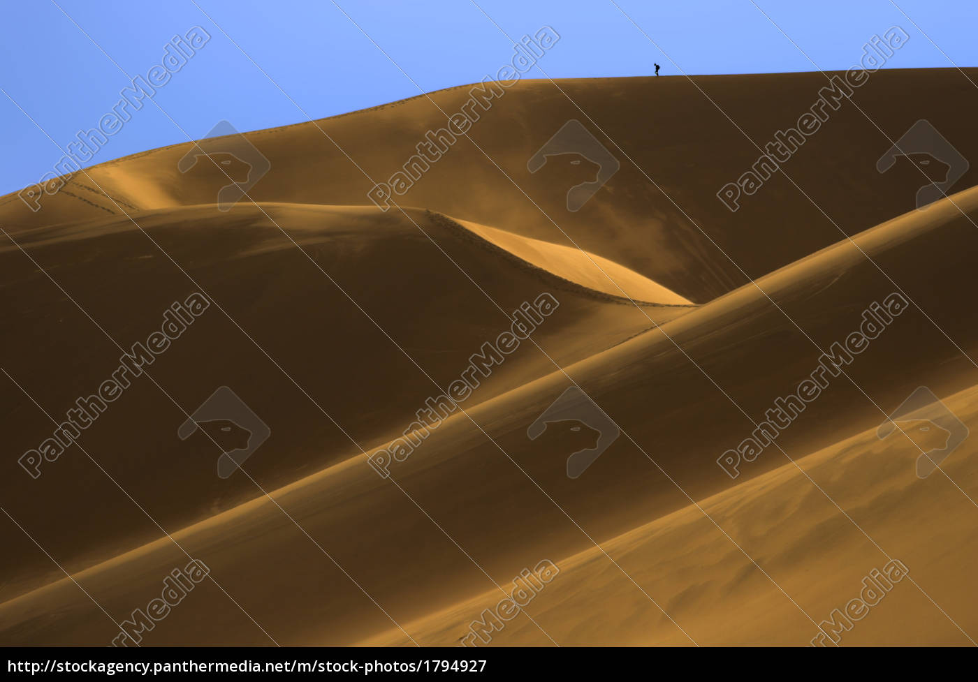 tiny, backpacker, in, dunes - 1794927