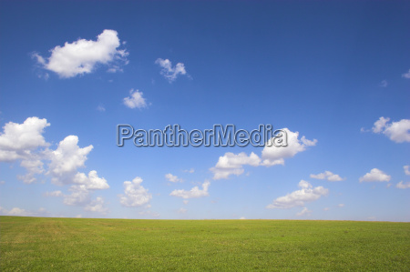 green field for background