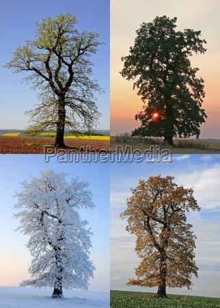 in the seasons change