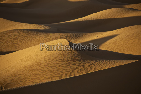 sand dunes in the desert with
