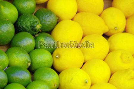 lime lemon lime citrous 03