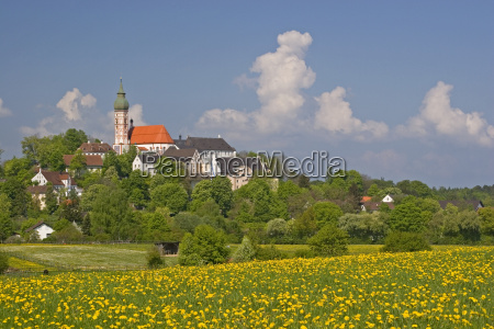 andechs with dandelion meadows