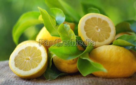 mature lemons