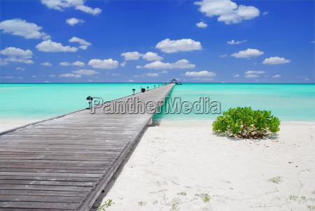 blue beach seaside the beach seashore