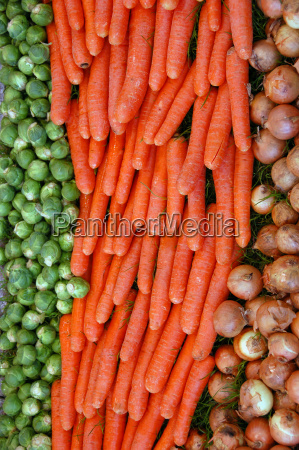 carrots onions brussels sprouts