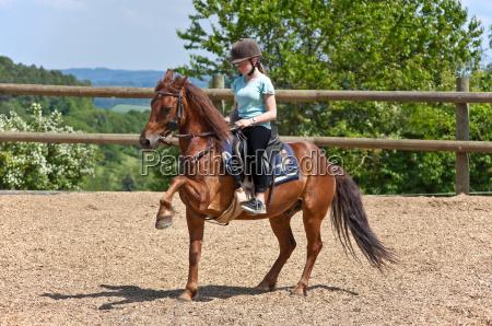motion postponement moving movement ride horse