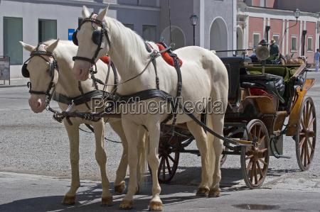 fiaker carriage