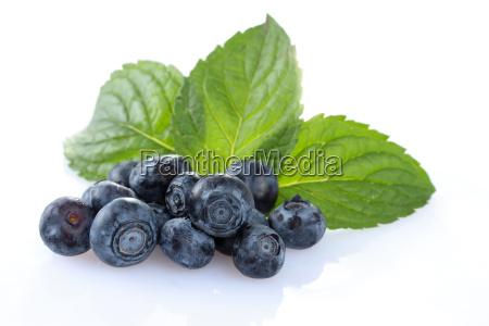 bilberries blueberries