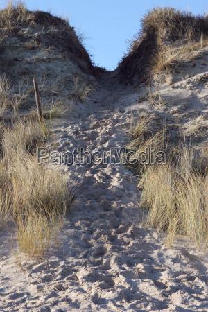 in the dunes new ways