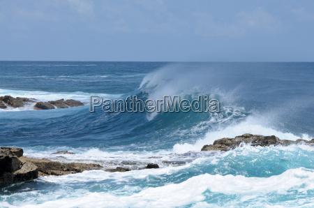 wave on the atlantic coast fuerteventura