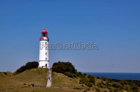lighthouse thorn bush