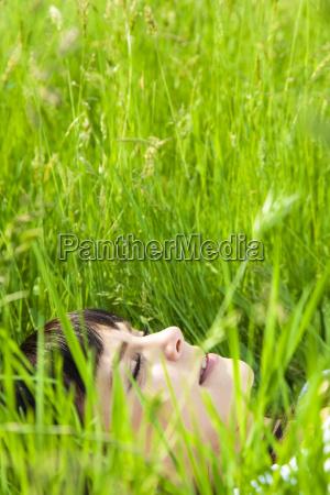 meadow - 2201883