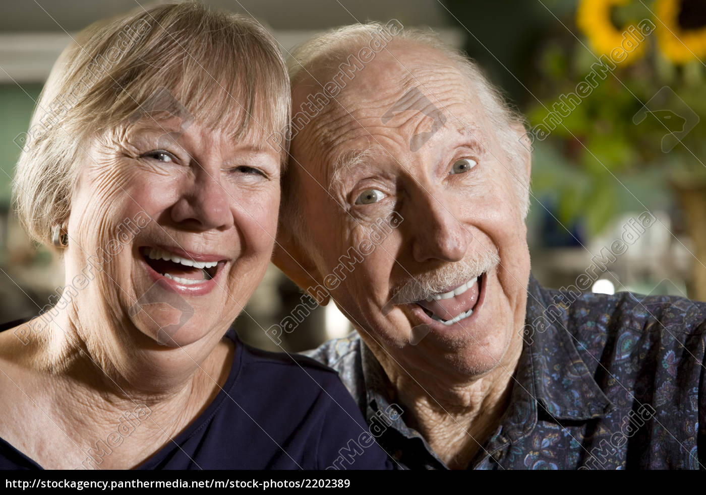 portrait, of, senior, couple - 2202389