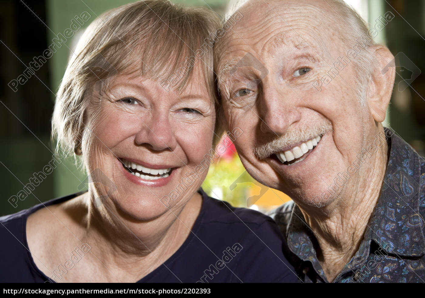 portrait, of, senior, couple - 2202393