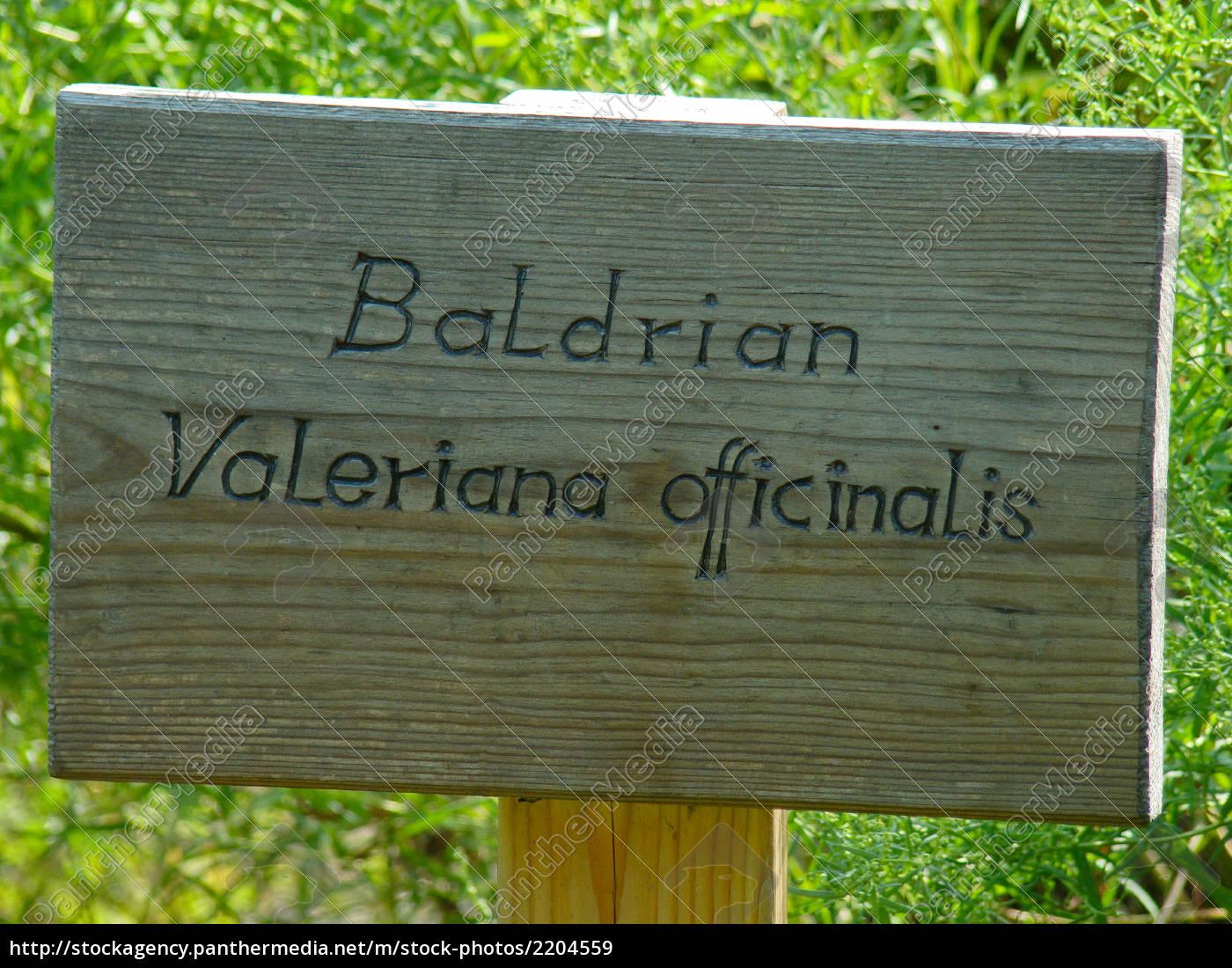 valerian - 2204559