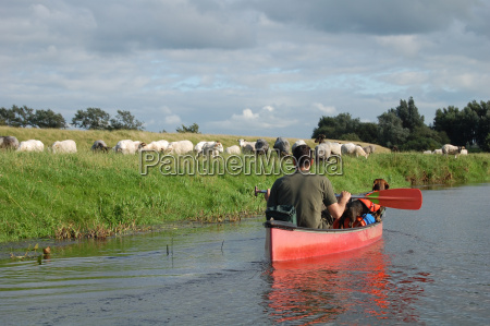 paddling on the treene
