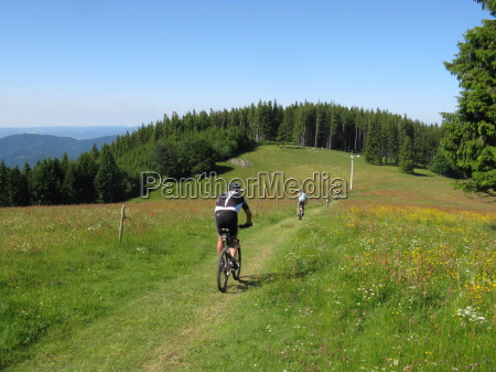 cycling in the black forest