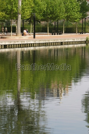 day trees city calm climate reflection