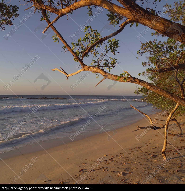 costa, rican, coastline - 2254459