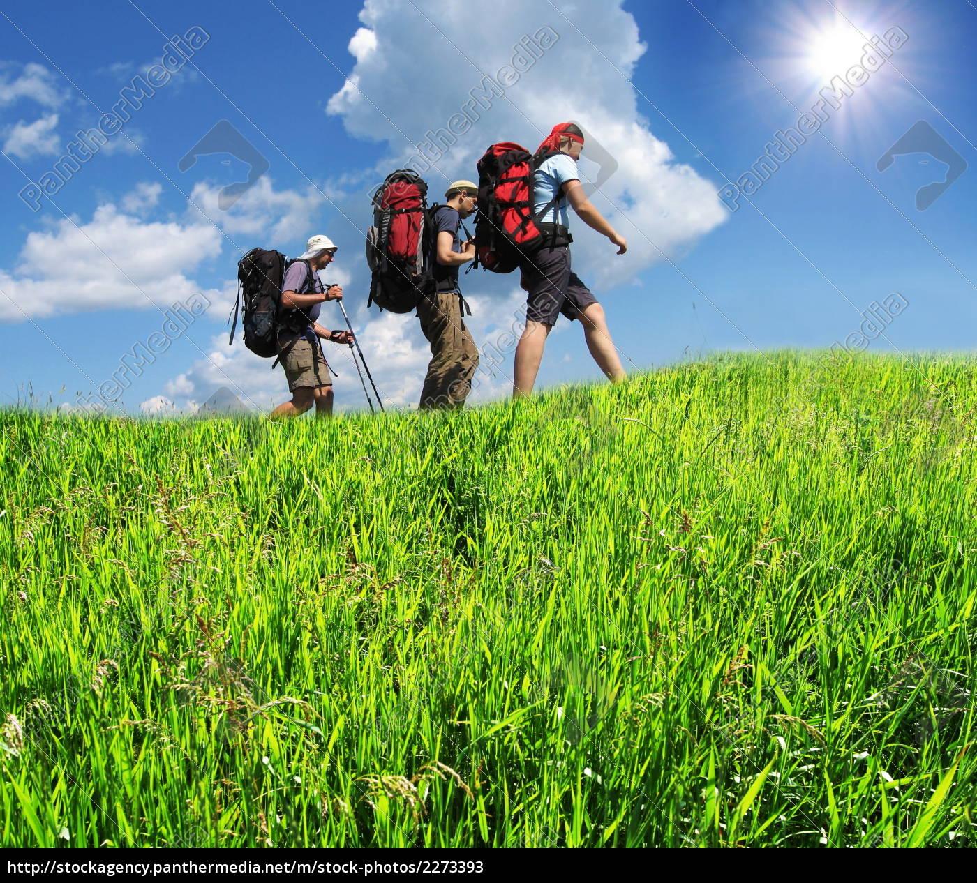 hike - 2273393