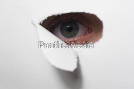 eye - 2389751