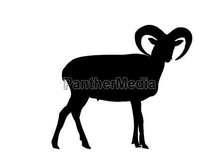 capricorn silhouette