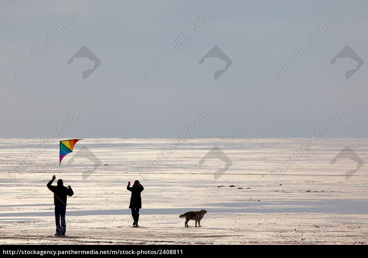 kite, flying - 2408811