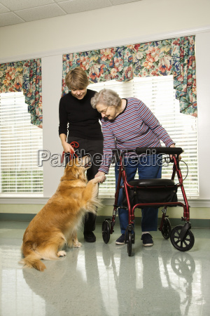 elderly woman with therapy dog