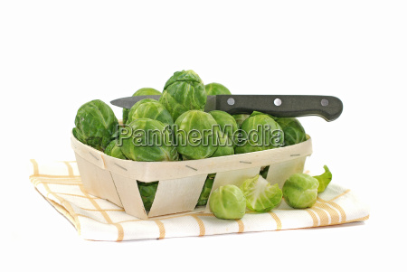 brussels sprouts fresh from the field