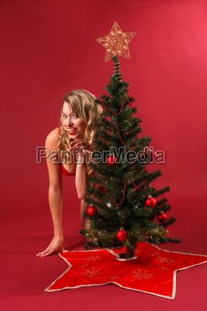 erotic wild on the christmas tree