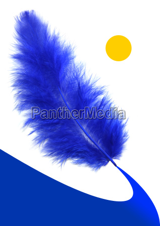 blue feathers way