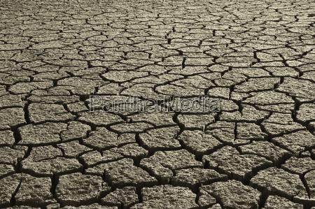 dry, mud, field - 2543569