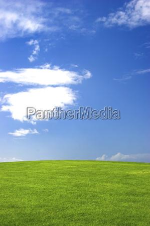 green, field - 2543599