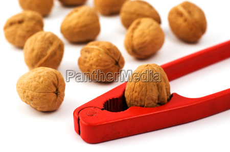nutcracker, with, walnuts, isolated, on, white - 2543349
