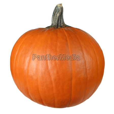 pumpkin ready to carve