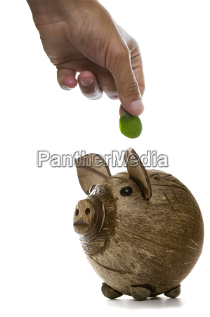 fingers depositing a green coin