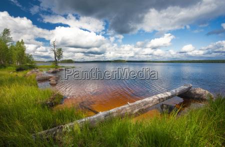 sommer szene finnland