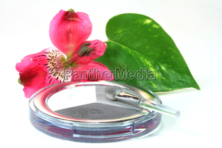cosmetics beauty care rouge makeup powder