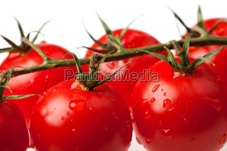 tomaten isoliert auf weissem hintergrund