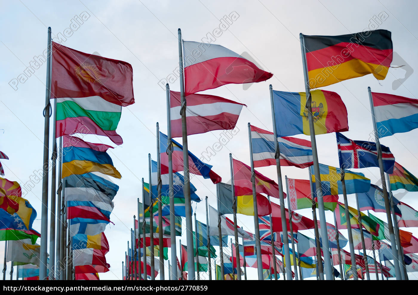 state, flags, in, the, wind - 2770859