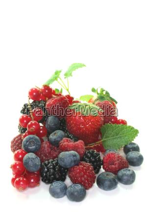 leaf berries black currants huckleberries raspberries