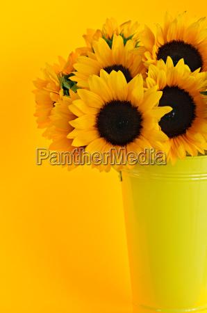 sunflowers, in, vase - 2806785