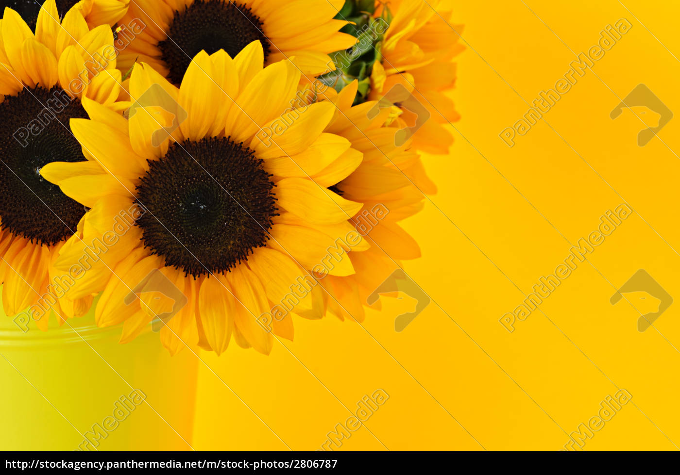 sunflowers, in, vase - 2806787